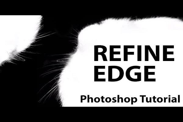 Giới thiệu công cụ Refine Edge trong Photoshop