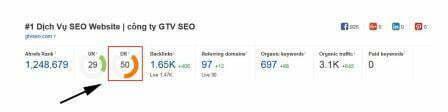 Chỉ số Domain Rating