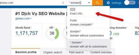 Bước 3: Chọn URL.