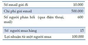 cách tính tỷ lệ ROI trong Email Marketing